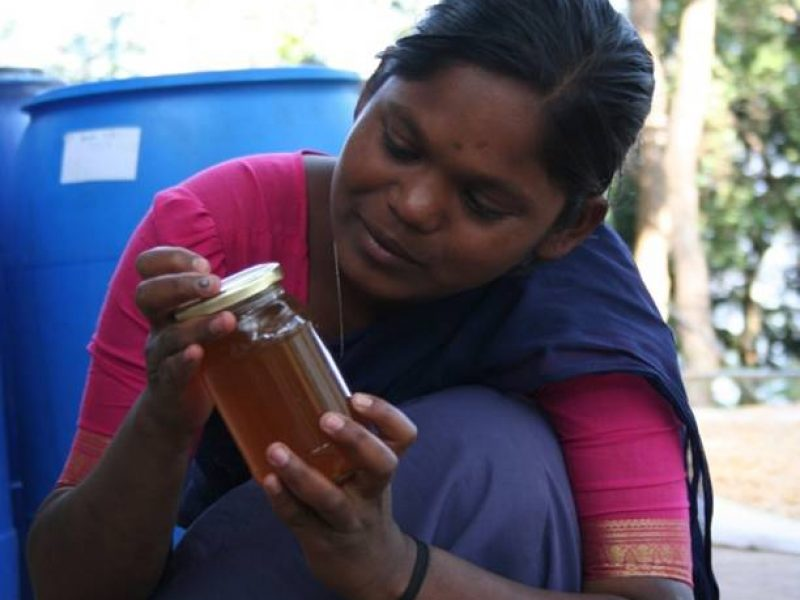 Honey is processed and packed in bottles to make it ready for the market